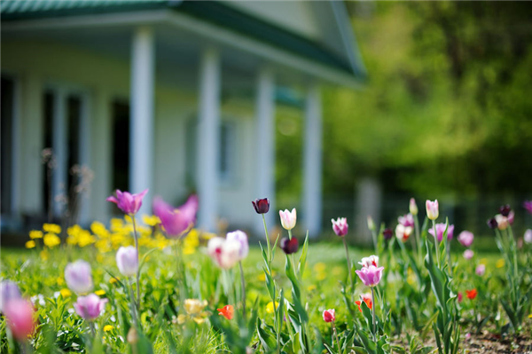 Spring Clean Your Home's Curb Appeal